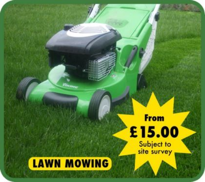 Have Your Lawn Mowed